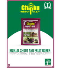 Chipku Brinjal Fruit & Shoot Borer Lure (Pack of 10)