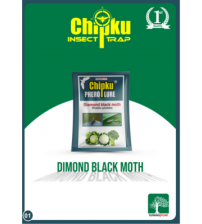 Chipku Diamond Black Moth Lure (Pack of 10)