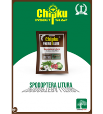Chipku Spodoptera Litura Lure (Pack of 10)