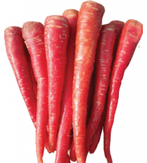 Carrot Country Red 100 grams (Advanta)