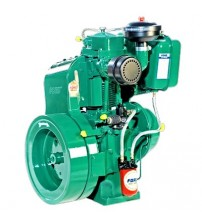 Peter Diesel Engine 15HP 1500RPM