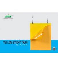 Yellow Sticky Trap - 22 cm x 28 cm