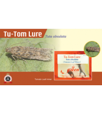 Tu - Tom Lure / Tuta Absoluta Pheromone Lure