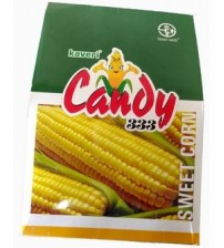 Maize / Sweet Corn Candy 333