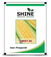 Maize / Sweet Corn Sweet-80 500 grams