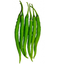 Chilli / Hot Pepper UN Tarak