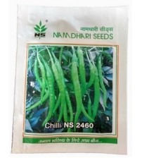 Chilli / Hot Pepper NS2460
