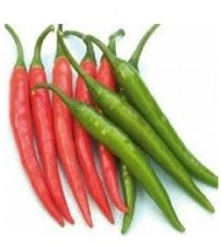 Chilli / Hot Pepper NS 1840 (Namdhari)