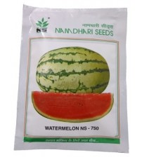 Watermelon NS 750 (Namdhari)