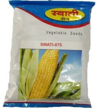 Maize / Sweet Corn Swati-075 100 grams