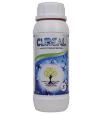 CUREAL - Zinc Based Anti Bacterial 250 ml
